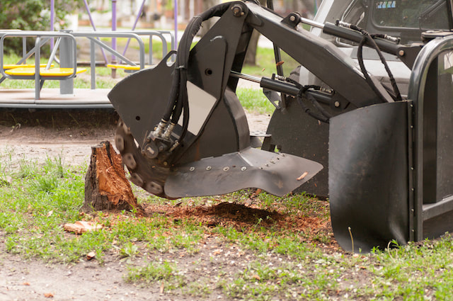 Tree Stump Grinding Tampa